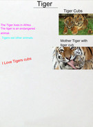 cecilie 5.a Tiger's thumbnail