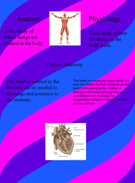 Anatomy and Phyisology's thumbnail