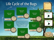 Life cycle of the Bugs's thumbnail