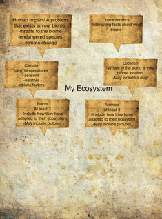 Ecosystem Project