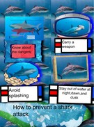 Kasin Bramlett how to prevent shark attacks's thumbnail