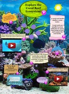 The Coral Reef's thumbnail