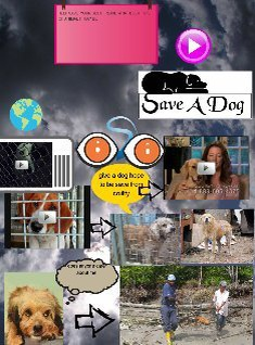save a dogs