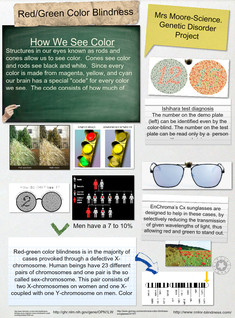 Red/Green Color Blindness