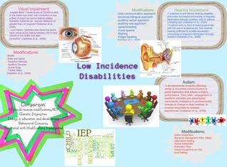 Low Incidence DIsabilities