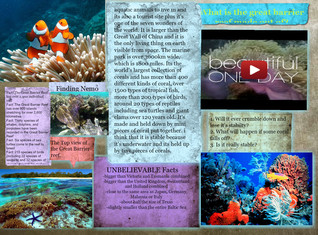 Great Barrier Reef - Made out of