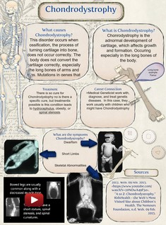 Chondrodystrophy