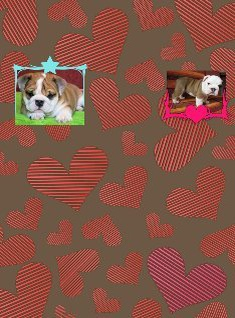 dogs and hearts