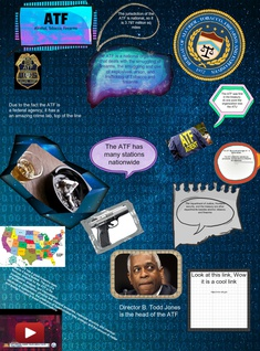 ATF Poster Ms. Haines