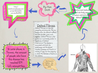 Science - Muscles and Diseases