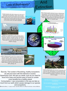 Loss of Biodiversity and Extinction