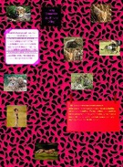 Kindra`s Cheetah World's thumbnail