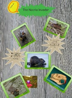 The Nutria Invader: From Argentina to Louisiana Rachelle Fisher