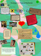 Ecology in a Tropical Rainforest's thumbnail