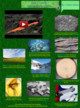 Geologic Change over time thumbnail