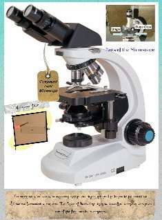 Parts of the Compound Microscope