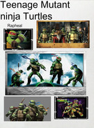 Teenage mutant ninja turtles's thumbnail