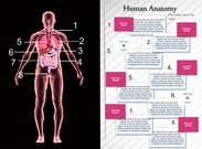 [2015] jacob edwards: Human Anatomy's thumbnail