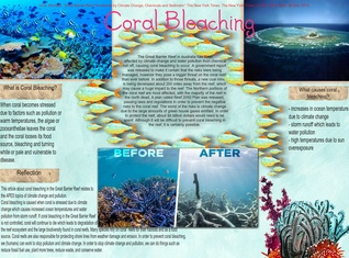 Coral Reef Article