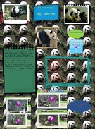 [2012] Ford: Glog2- My mammal: The Giant Panda's thumbnail