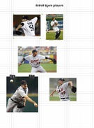detroit tigers players's thumbnail