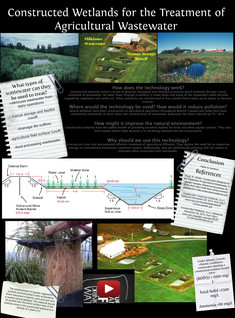 Constructed Wetlands for the Treatment of Agricultural Wastewater