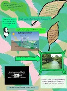 Eutrophication~Kelly Cargill's thumbnail