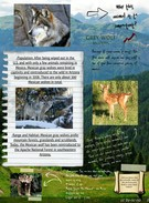 Mexican Wolf's thumbnail