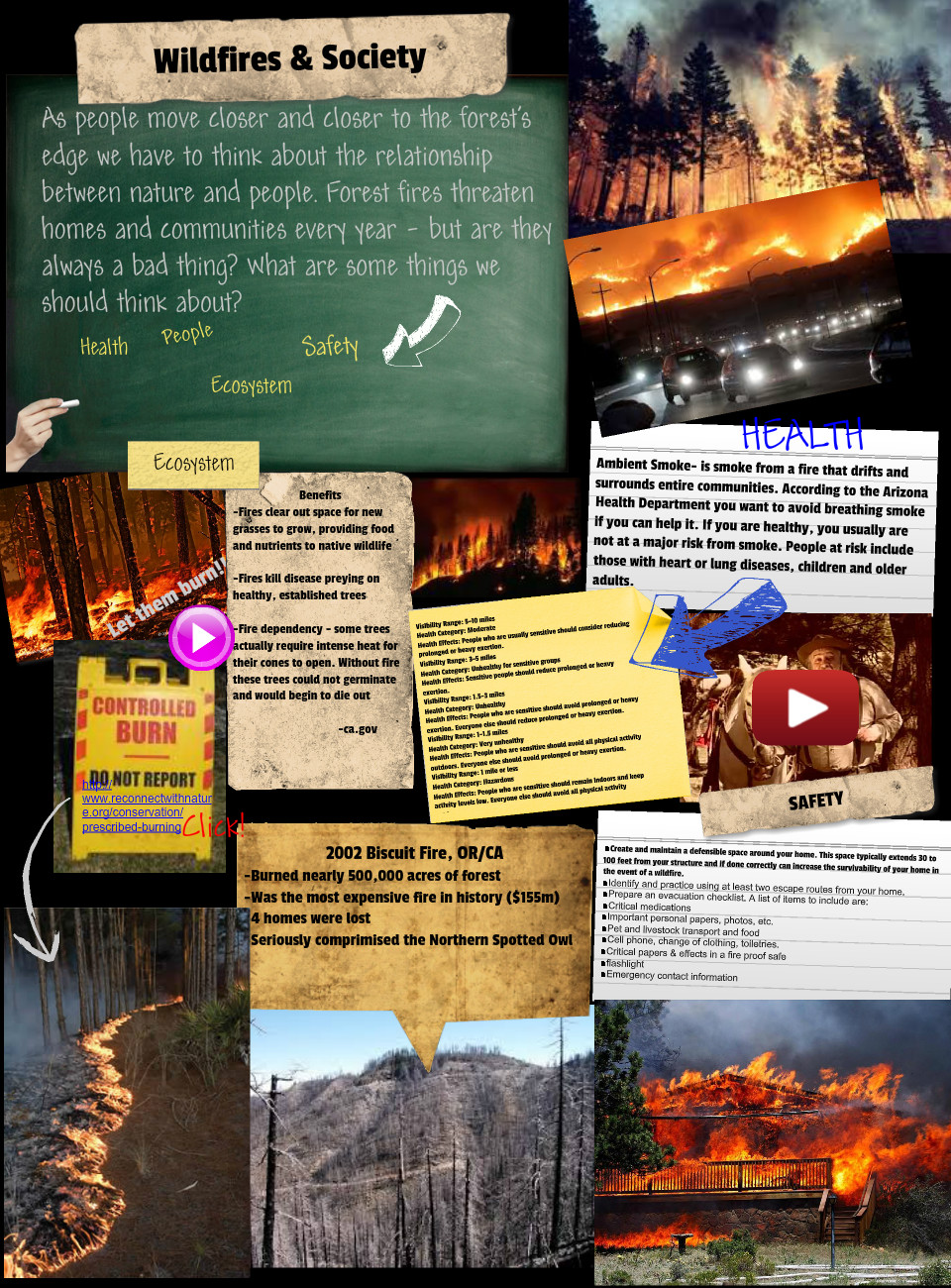 Wildfires & Society