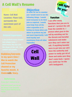Cell Wall Resume
