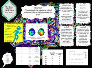 Brain Health Project: (physical activity)