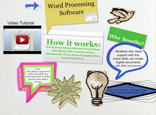 Word Processing Software