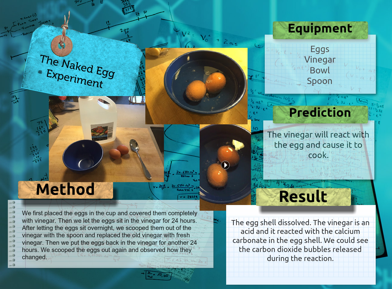 Chemical Change: The Naked Egg Experiment and Scientist