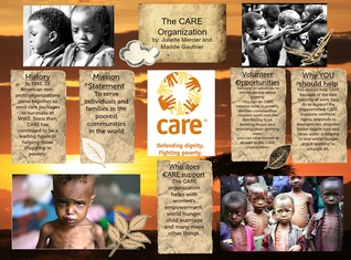 the-CARE organization