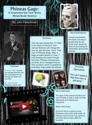 Phineas Gage Project's thumbnail