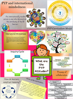 Reflection of PYP
