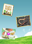 Diary of a Worm's thumbnail