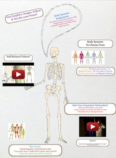 Body Systems Poster
