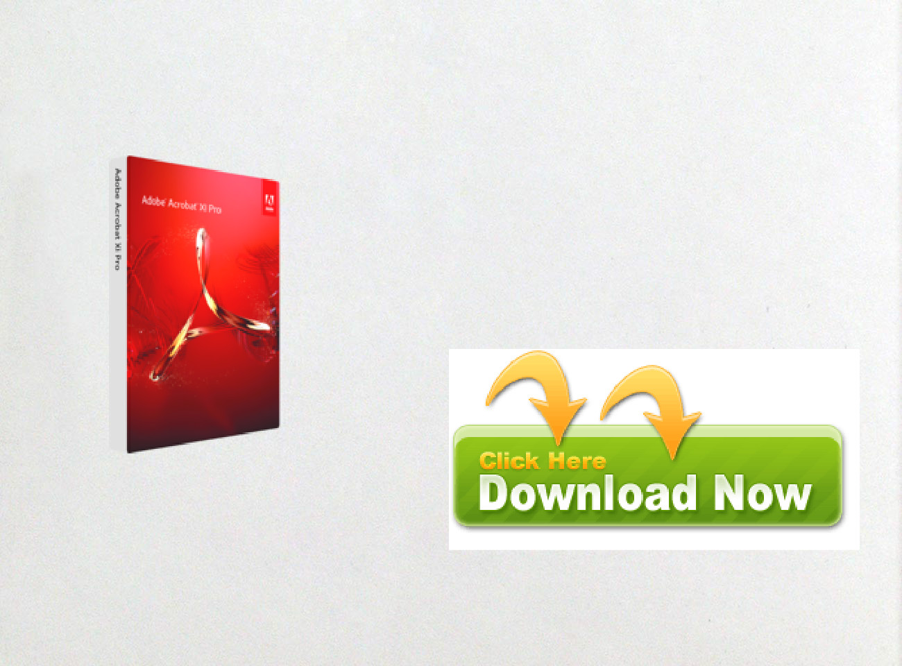 Purchase Adobe Acrobat XI Pro discount price: text, images